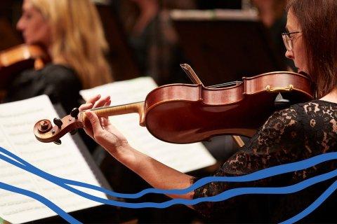 2022 Bartok And Beethoven 1200X800Px