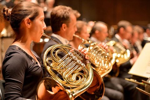 Mso Orchestra French Horn 1200X800