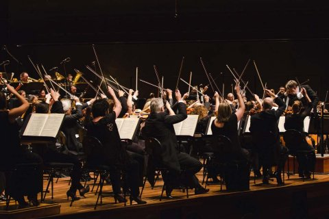 Mso Orchestra Onstage Online Only 1200X800