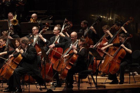 Orchestra Hamer Hall Strings Section 1200X800